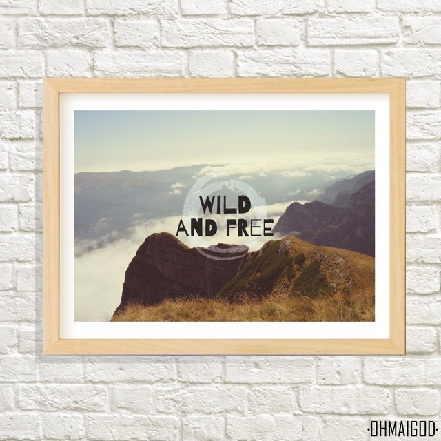 CUADRO WILD AND FREE