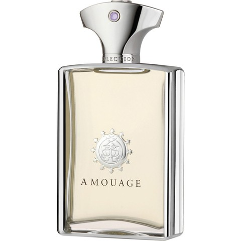 Reflection Man De Amouage Masculino - Decant