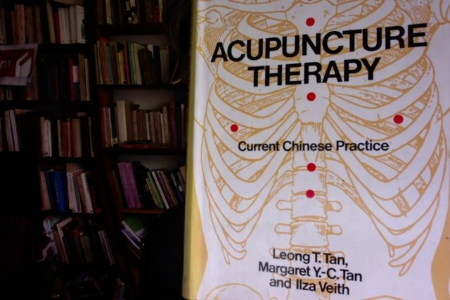 Acupuncture Therapy - Current Chinese Practice- Leong T. Tan - Margaret Y. -C. Tan and Ilza Veith