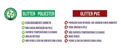 Kit Glitter Poliester 12 Un 3g  Colormake na internet