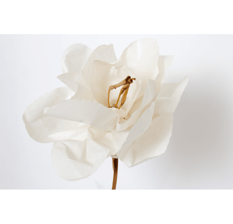 Luxury Paper Flower Magnolia en internet