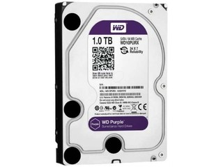 DISCO RIGIDO 1TB SATA 6GB 3.5 PURPLE PURPURA