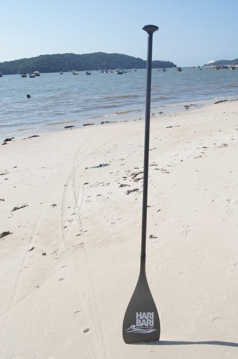 Remo Fibra de Carbono para Stand Up Paddle na internet