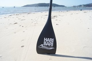 Remo Fibra de Carbono para Stand Up Paddle