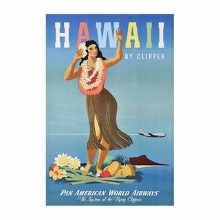 Cuadro Focu Deco En Lienzo Canvas 20x30 Airline Panam Hawaii
