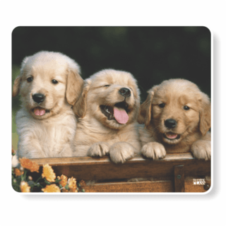 1068-Mouse Pad Polytec 3 Cachorrinhos