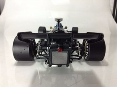 F1 Lotus Ford Type 72E Ronnie Peterson - Exoto 1/18 na internet