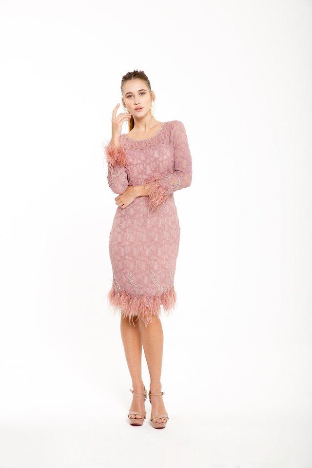 Increíble Vestido De La Dama De Plumas Festooning - Ideas de ...