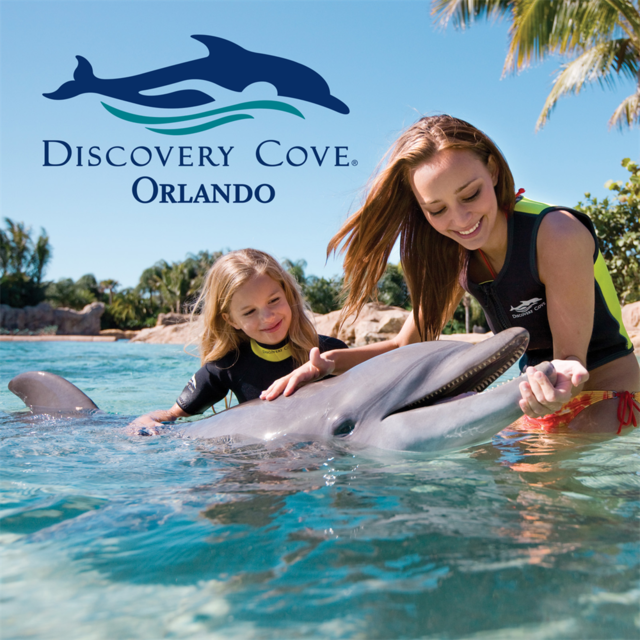 DISCOVERY COVE - COM NADO com golfinhos + Sea World + Aquatica TEMPORADA MÉDIA