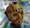 PIPA MONSTERS: JASON VOORHEES