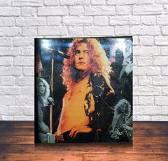 CARPETA ROBERT PLANT