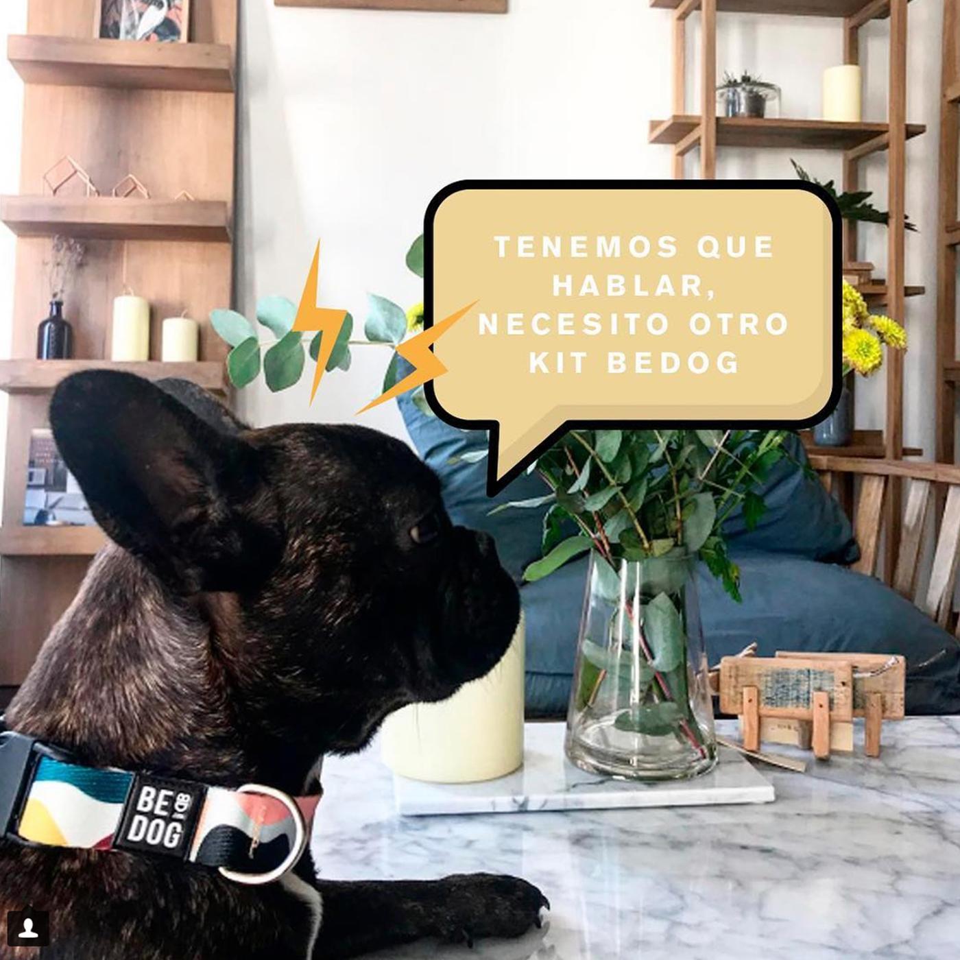 Foto de la tienda online Be Dog