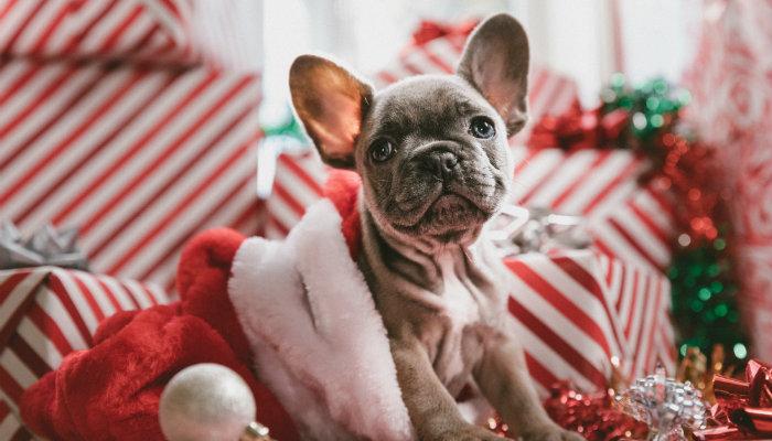 6 claves para preparar tu tienda en Navidad