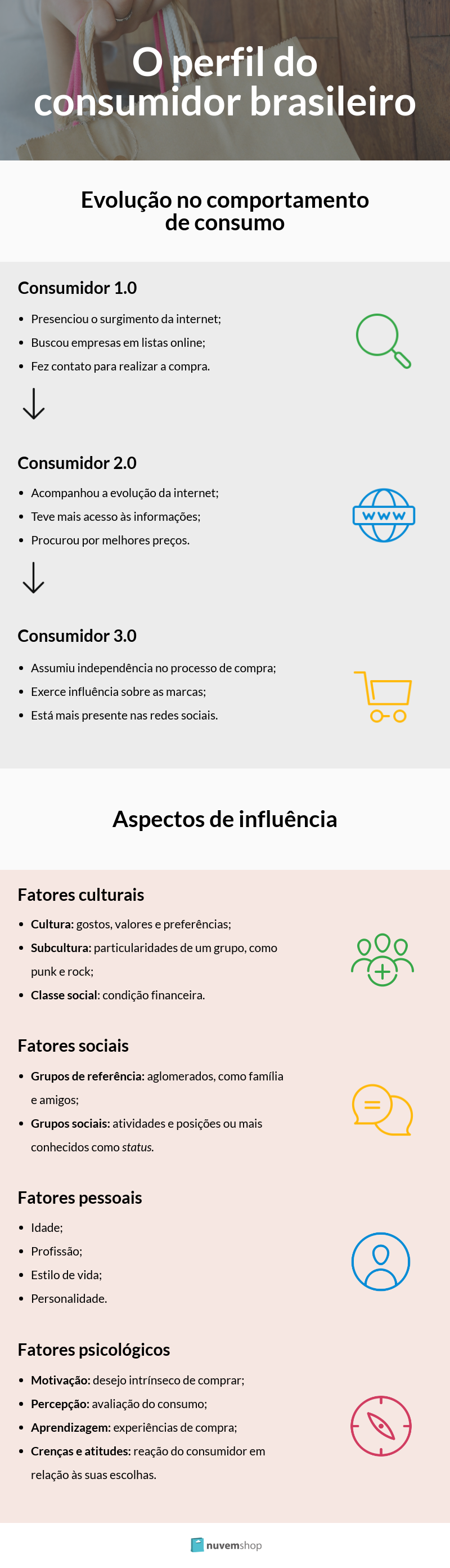 infográfico sobre perfil do consumidor brasileiro