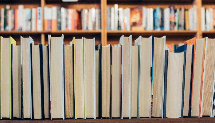 sociedade de idiotas inteligentes estante de livros