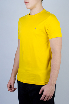 Camiseta Tommy Hilfiger Basic (324888)