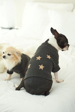 SWEATER PUPPY STAR (I20T2906C04) en internet