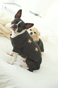 SWEATER PUPPY STAR (I20T2906C04) - comprar online