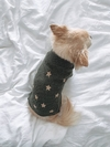 SWEATER PUPPY GALAXY (I20T2909C7)
