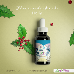 Floral de Bach - Holly 30 ml
