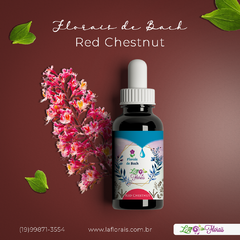 Floral de Bach - Red Chestnut 30 ml - comprar online