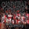 CANNIBAL CORPSE - THE BLEEDING (DIGIPAK)