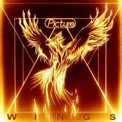PICTURE - WINGS (SLIPCASE)