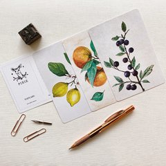 Pack de Postales Vintage Fruits
