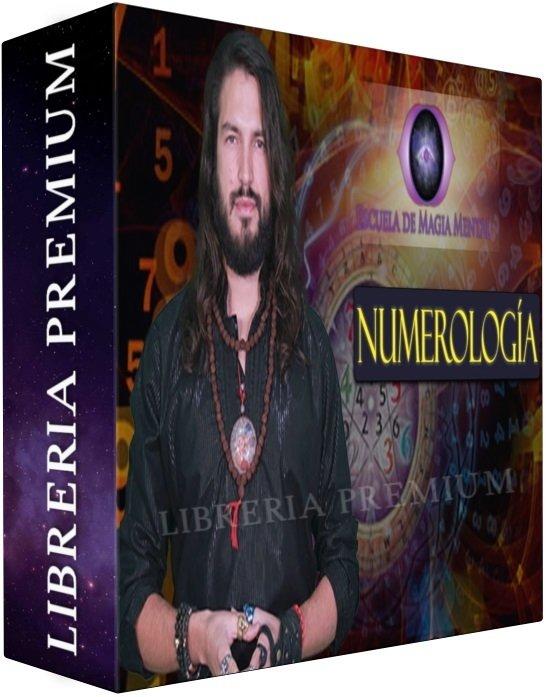 manual de numerologia alejandro lavin pdf