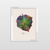 Quadro Decorativo Inkolloures Libertarte All Leafman
