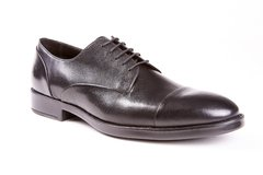 Aquila Oxford | Tempest - buy online
