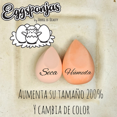 Eggsponja cambia color en internet