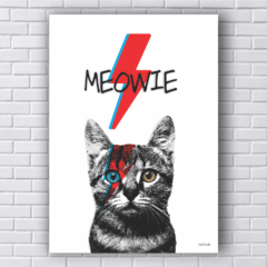 Placa gato david bowie raio