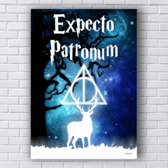 Placa EXPECTO PATRONUM  Harry Potter