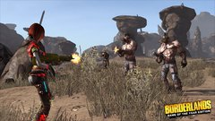 BORDERLANDS GAME OF THE YEAR EDITION GOTY PS4 en internet