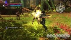 KINGDOMS OF AMALUR RECKONING PS3 en internet
