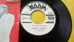 Vinil Reggae Tribesman Sunday Morning Compacto 45 Rpm - comprar online