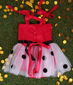 Minnie Mouse Romper on internet