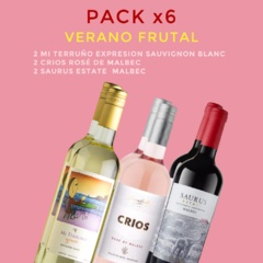 PACK x6 Verano Frutal