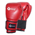 GUANTES DE BOX 10 OZ EN BOLSA DE RED