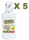5 ENXAGUANTE BUCAL NATURAL LIMAO/GENGIBRE S/FLUOR 250 ML ORGANICO NATURAL