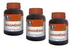 3 Magnesio 60cps X 500mg Doctor Berger