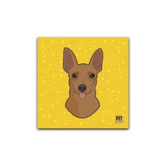 Placa Pinscher (Marrom - Macho) Petquadros
