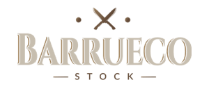 Barrueco Stock