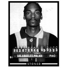Camiseta Masculina Snoop Dogg Busted - comprar online