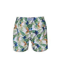 Kids Shorts Macaw 20 - buy online