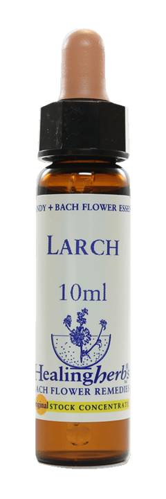 LARCH FLORAL DE BACH 10ML