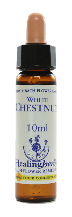 WHITE CHESTNUT FLORAL DE BACH 10ML
