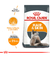 Royal Canin Hair and Skin Care Gato - comprar online
