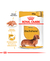 Royal Canin Pouch Dachshund  Adulto